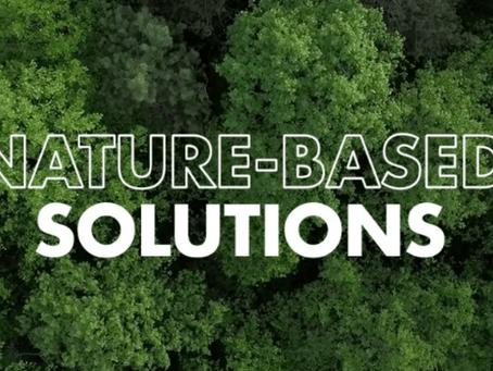 "The Webinar 18.12 on""Nature-based solutions"" 网络研讨会""基于自然的解决方案"""