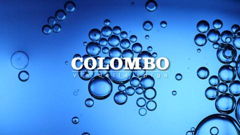 COLOMBO Spot for Translook