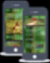 create app online