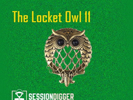 The Locket Owl 11