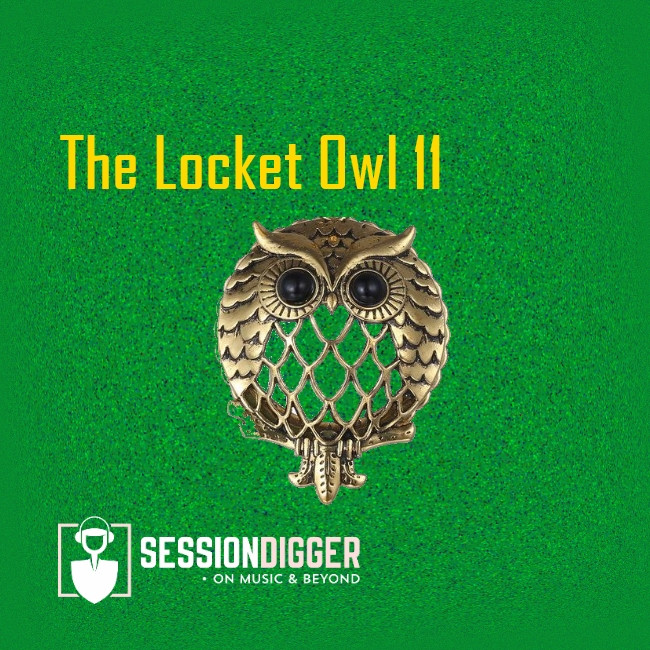 The Locket Owl 11