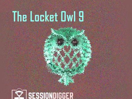 The Locket Owl 9
