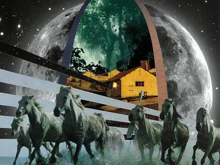 Dead Horse Gang - Where Wild Horses Go