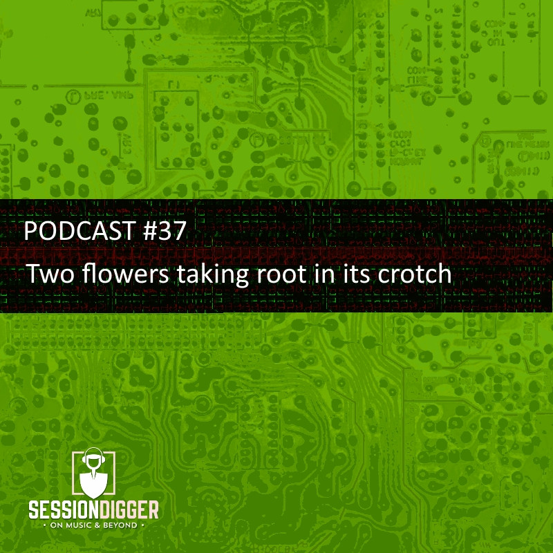 SESSIONDIGGER PODCAST #37 - Two flowers taking root in its crotch