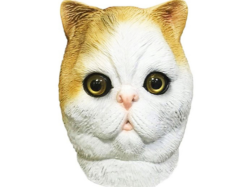 Snoopy the Exotic Shorthair Cat Costume Face Mask