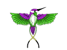 humming bird.png