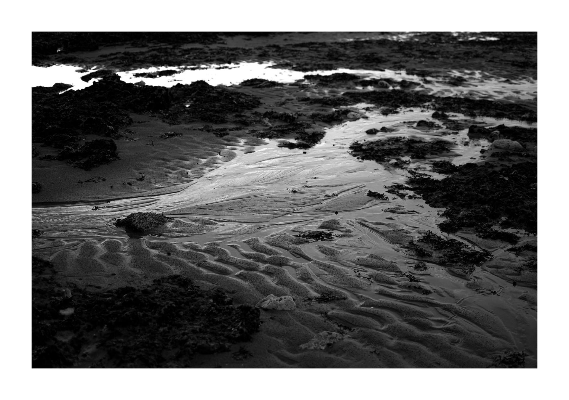 Sand - Botany bay, 2020