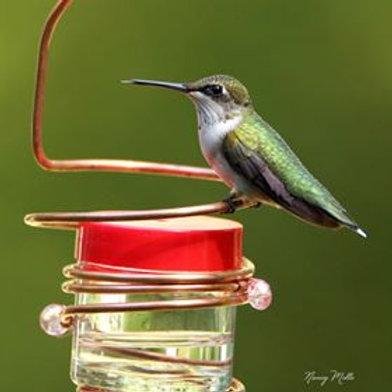 Copper Hummingbird Feeder-Hanging with Crystals, 2 Varieties