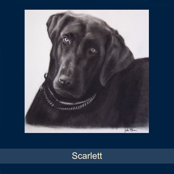 10_Scarlett.jpg
