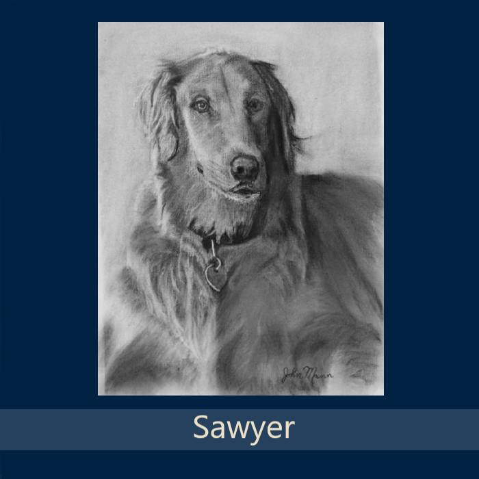 21_Sawyer.jpg