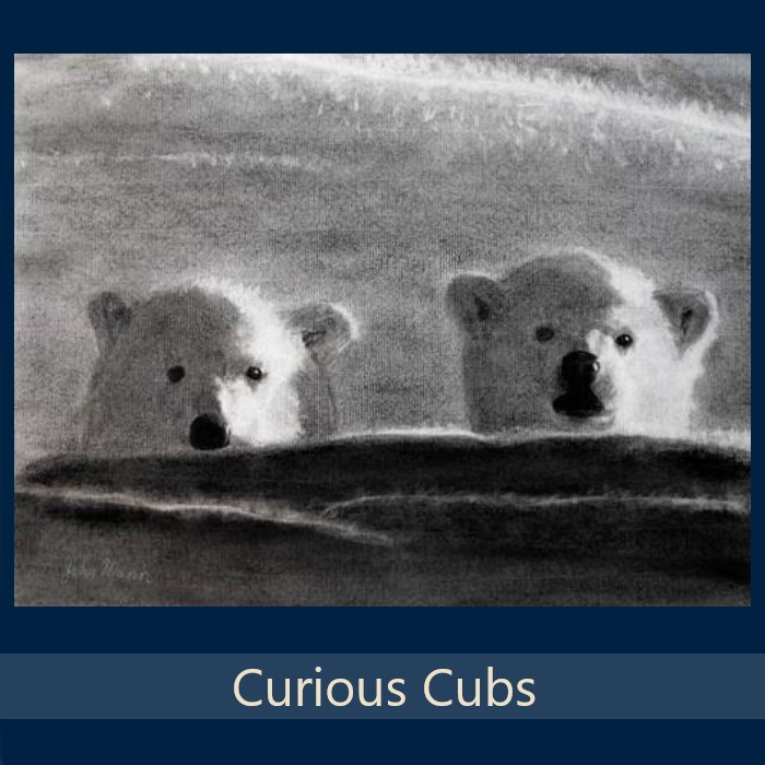 Curious Cubs - Gallery.jpg