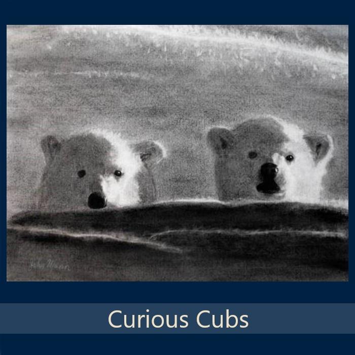 Curious Cubs - Gallery.jpg