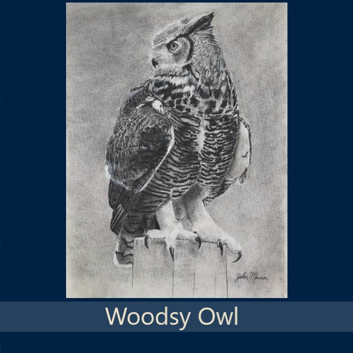 Woodsy Owl - Gallery.jpg