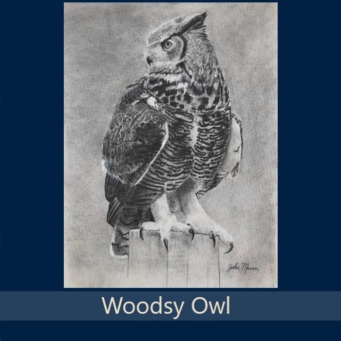 Woodsy Owl - Gallery.jpg
