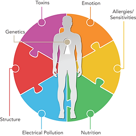 7 interferences to your health