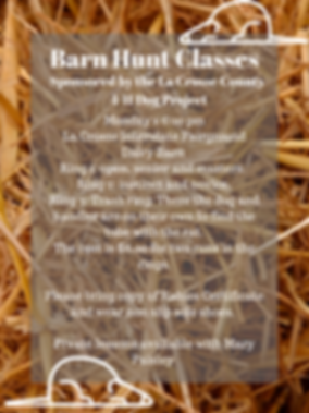 Barn Hunt Classes.png