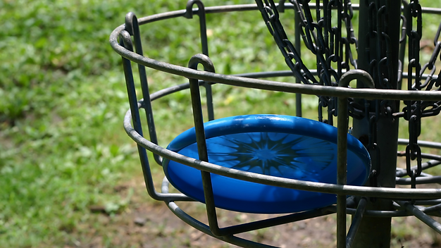Disc Golf.png