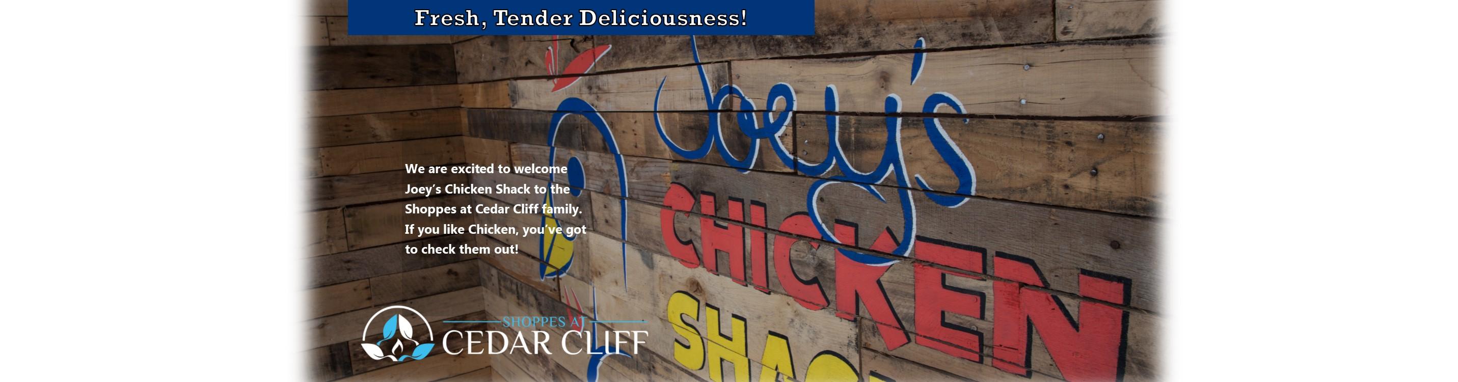 Joeys Chicken2