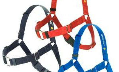 Sense-ation Dog Harness