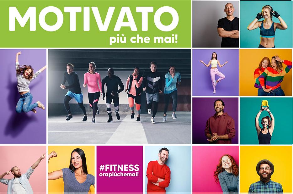 motivato 3.png