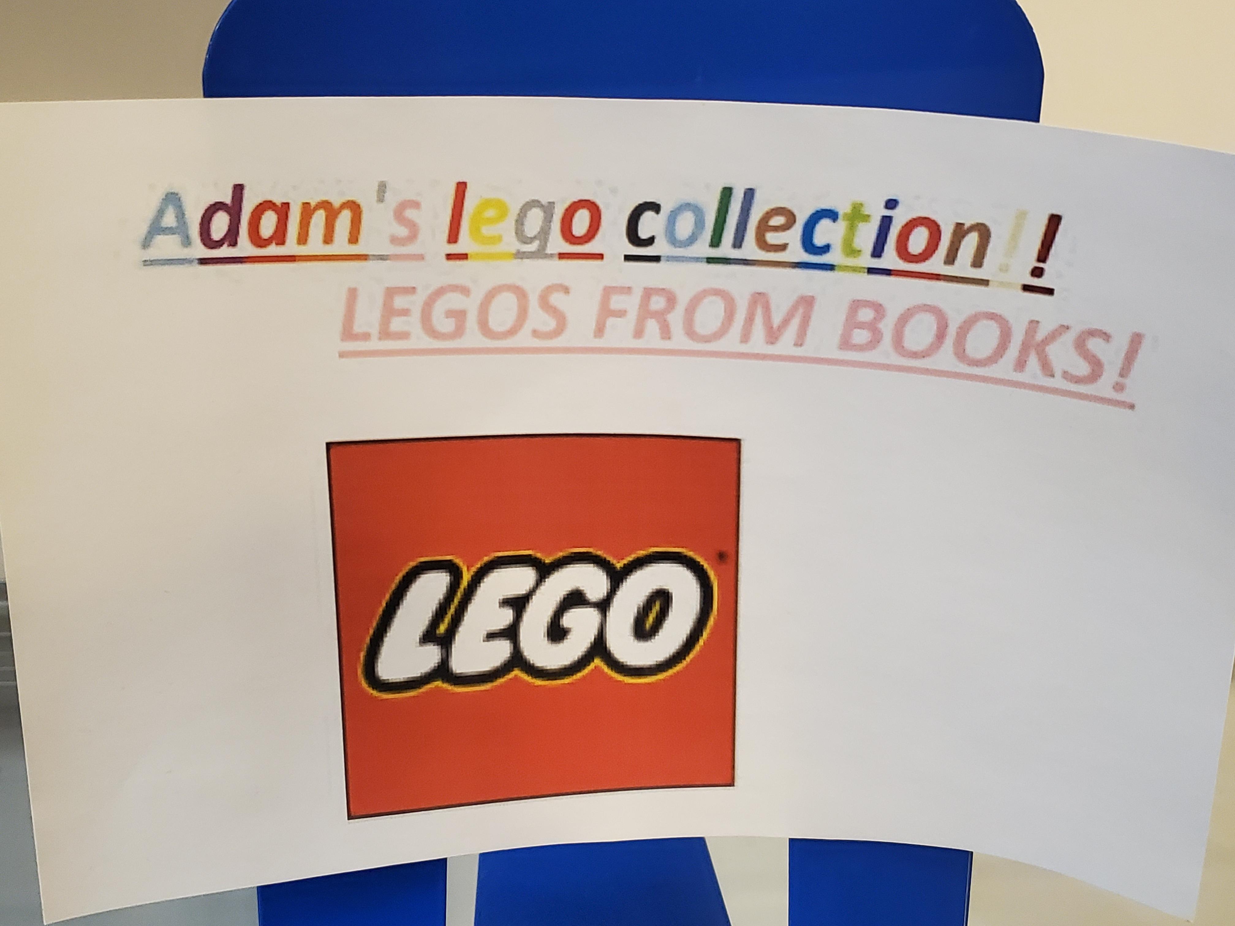 Adam's Legos From Books