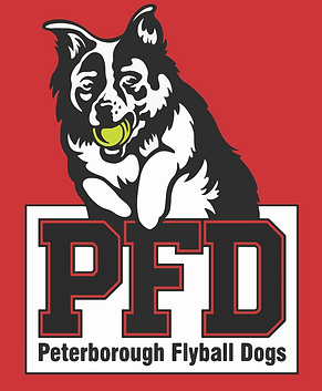 Peterborough Flyball Dogs