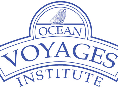 Ocean Voyages Institute Removes 40 Tons of Plastic