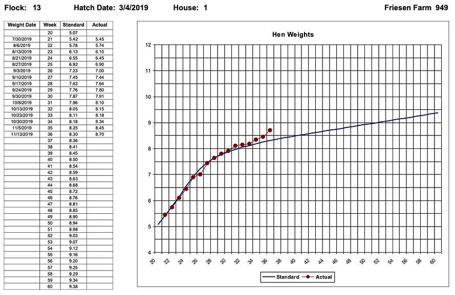 Hen Weight Chart - Egg Trac Software by Chick Pro