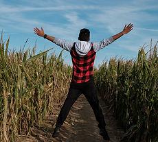 Corn Maze Fun at Brookdale Farms in Eureka, MO - St. Louis Largest Corn Maze