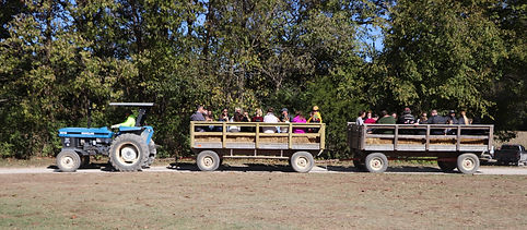 Brookdale Farms Group Hayrides and fall