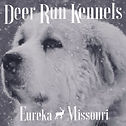 Deer Run Kennels.jpg