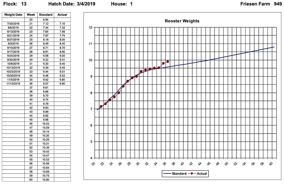 Rooster Weight Chart - Egg Trac Software by Chick Pro