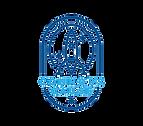 Connor's Cause logo - Non Profit
