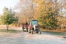 Brookdale Farms fall hayride - Eureka, MO.jpg