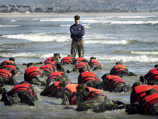 SEAL Training For Business