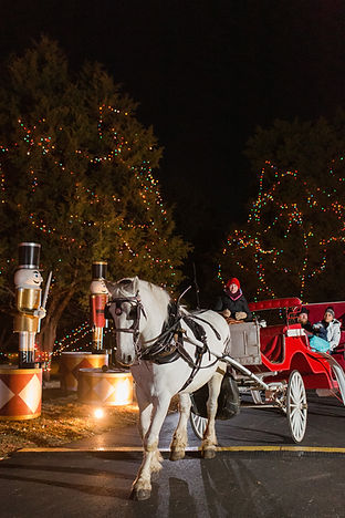 Celebration of Lights Holiday Carriage R