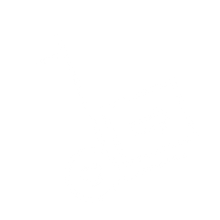 Carrier Icon.png