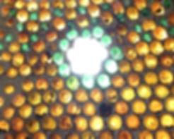 11b lizzie wynn can dome roof.jpg