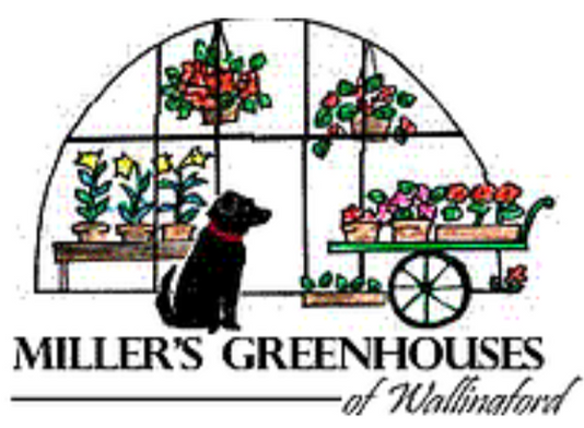 Miller's Greenhouses of Wallingford