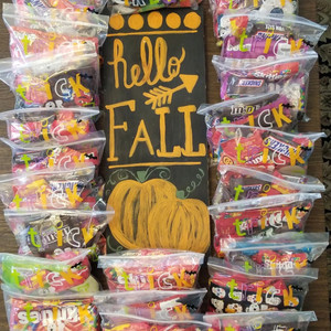 Local Girl Scouts gift grandkids with Halloween treat bags