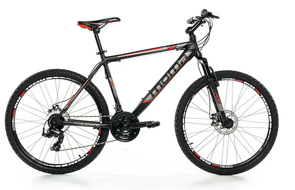 VTT adulte taille L