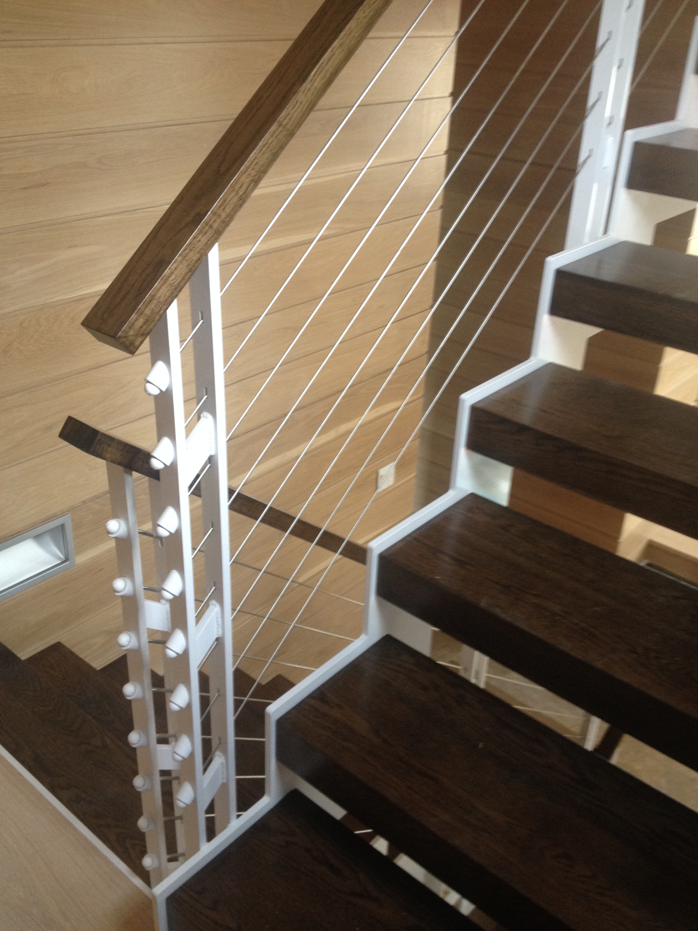 Interior White Wire Railing