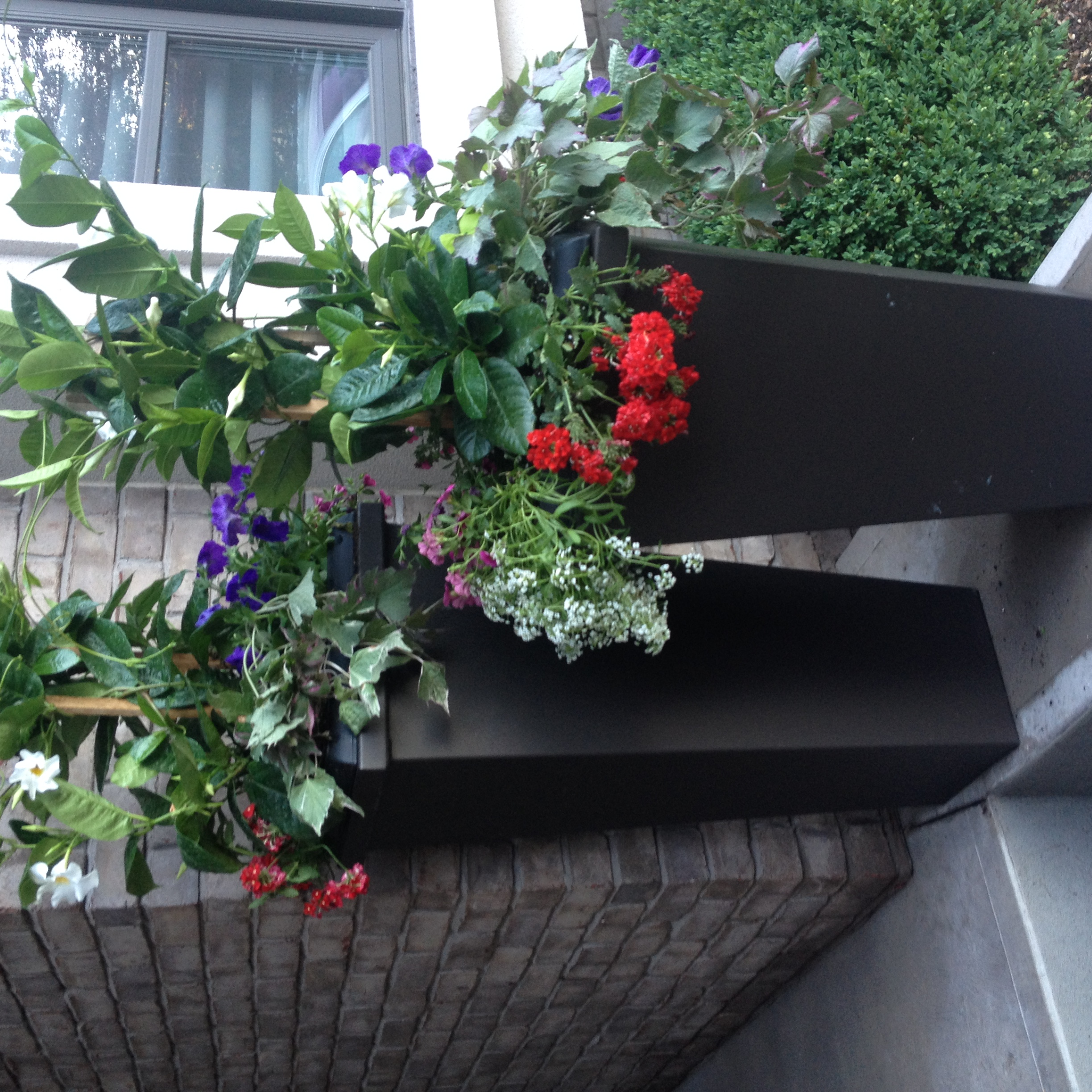 Tall Modern Flower pots