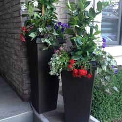 Tall Modern Flower pots