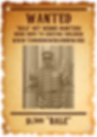 Bernie wanted poster png_edited.jpg
