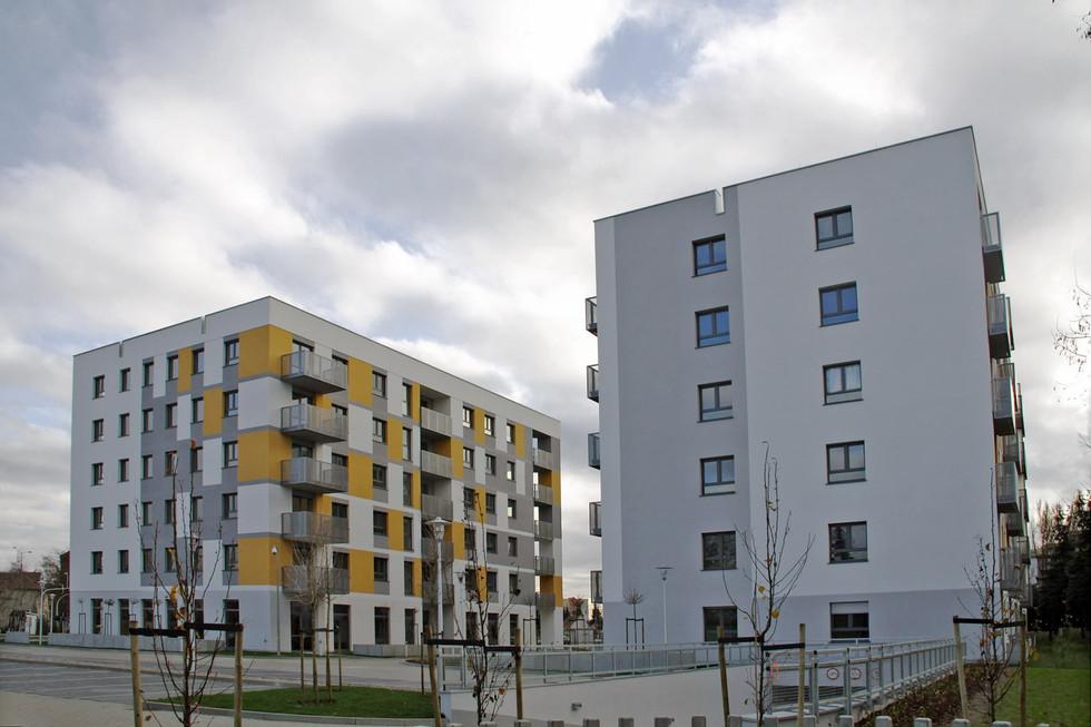 Wilczak, Poznań 3