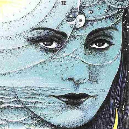 Intensive Astrology 2 - The Aspects & Chart Interpretation
