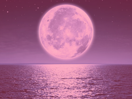 Full Pink Supermoon in Libra -     Sacred Blossoming of Beauty