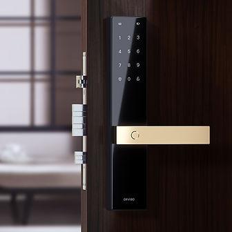 Smart Door Lock 2.jpg