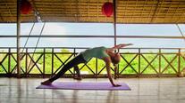 yoga-retreat-at-the-vine.jpg